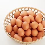 福島県会津地鶏の卵【福島県】