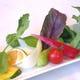 季節で変わる皿サラダ。平日に限りおかわり自由です。