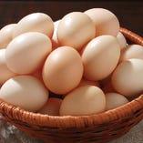 佐賀県神埼市宮地さんの鶏卵【佐賀県】