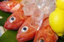 北海道網走産の釣りキンキ