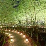 竹林の中を通って玄関へ