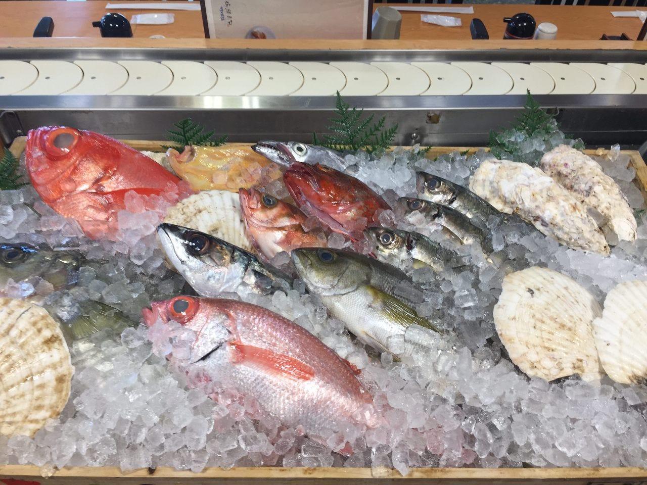 唐戸市場からお取り寄せの鮮魚をぜひお召し上がり下さい!