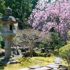季節を感じる 【春の庭園】
