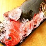 石川県金沢から直送の鮮魚色々と…