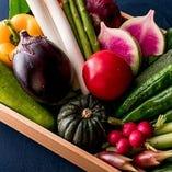 全国各地から厳選した四季折々の旬食材を使用