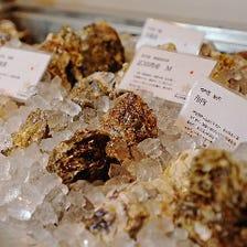 一年中楽しめる各地の個性豊かな牡蠣