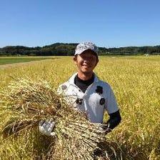 生産者より直接仕入れる野菜やお米!