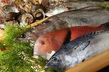福岡から毎朝4時空輸の新鮮魚介