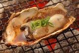 北海道釧路産の牡蠣。ジューシーで深い味わいを。 ※期間限定