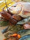 旬の新鮮鮮魚