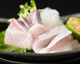 《明石昼網鮮魚》 一口食べれば味の違いは歴然!