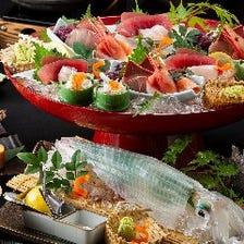旬の味覚と自慢の活魚・イカを味わう