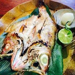 魚と釜飯 ウオマチ