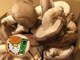 千厩産の原木椎茸(入荷待ちの日もございます)