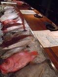 好きなお魚をチョイスしていただけます!