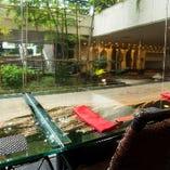 【カウンター席】 大きな窓の向こうには爽やかな緑広がる小庭が