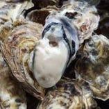 北海道産ブランド牡蠣【北海道】