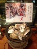 サロマ湖産1年物の牡蠣(冬季限定)【北海道サロマ湖】