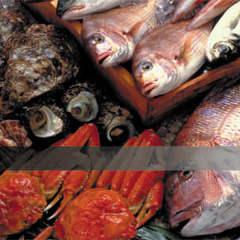 魚貝バル UMIYAMA