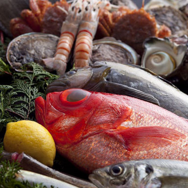 海鮮おどりや市場 京橋店 こだわりの画像