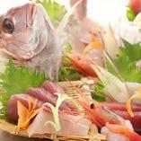 築地直送 日替わり鮮魚