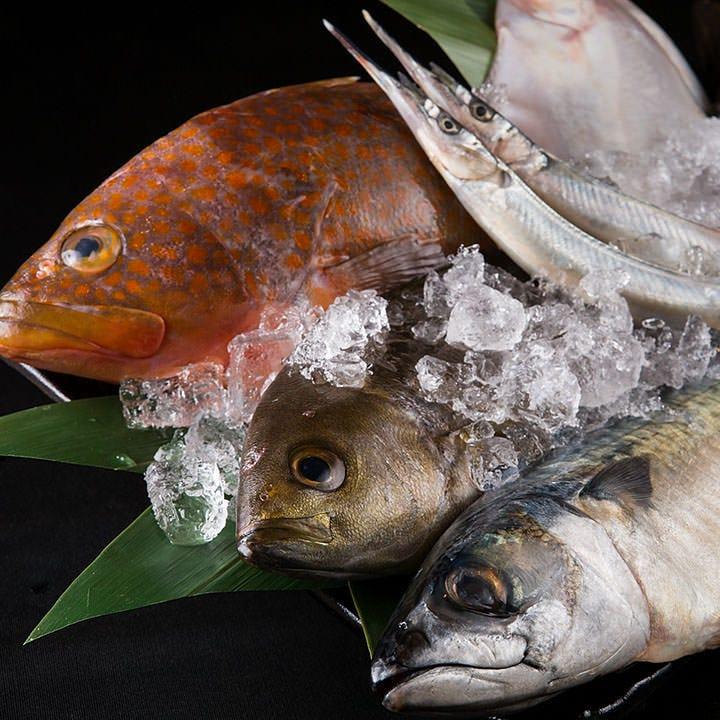 玄界灘で獲れた新鮮な魚!お刺身、煮魚、焼き魚でご堪能ください