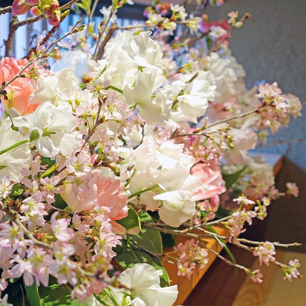 贅沢なひと時「お花見コース」でお花見気分を味わってください!
