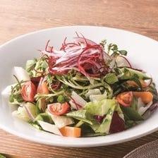 10品目野菜のサラダ すりおろし野菜ドレッシング