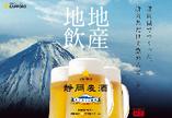 【静岡麦酒しずおかばくしゅ】静岡県だけで飲める樽生ビール!