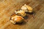 本日の真牡蠣バター