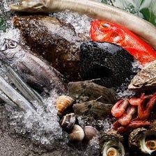 【宴海コース】産直ウニなど自慢の鮮魚堪能!逸品料理が揃う豪華コース 全12品<2H飲み放題付>6,000円(税込)