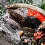鮮魚が自慢の当店では、三浦や金沢漁港など地元漁港を中心に、北海道から沖縄まで旬の魚を全国の漁港より直接仕入れています。