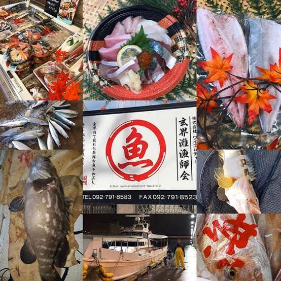 ■朝獲れ玄界灘直送新鮮鮮魚のお刺身