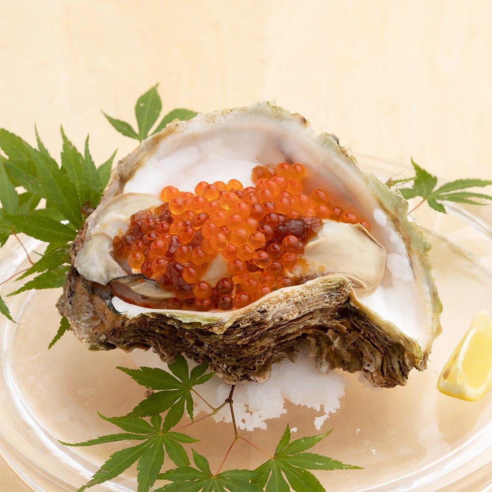 【8月限定 目利き食材】特大岩牡蠣