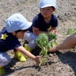 本格的な栽培の知識と技術を習得!