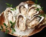 厚岸湾産殻付き牡蠣