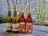 春に向けて、おすすめの自然派ワインが続々と入荷しています。