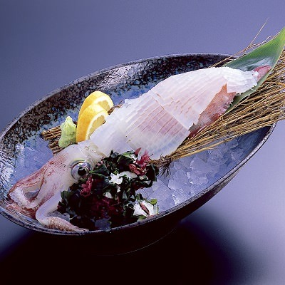ヤリイカの姿造り、ミミとゲソは天ぷらか塩焼きがおすすめ