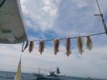店長が釣った魚が入る時も!