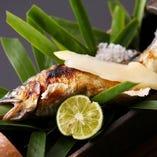 【季節の焼き魚】
