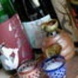 ~舎人のオススメ日本酒~        160cc売りです