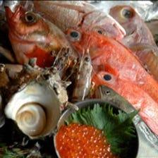旬魚/旬菜がこだわり