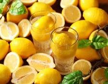 店主厳選のレモンサワー
