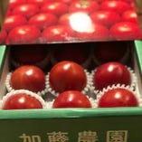 加藤農園フルーツトマト【愛知県】