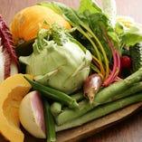契約農家直送野菜を使用したバーニャカウダが女性に人気!