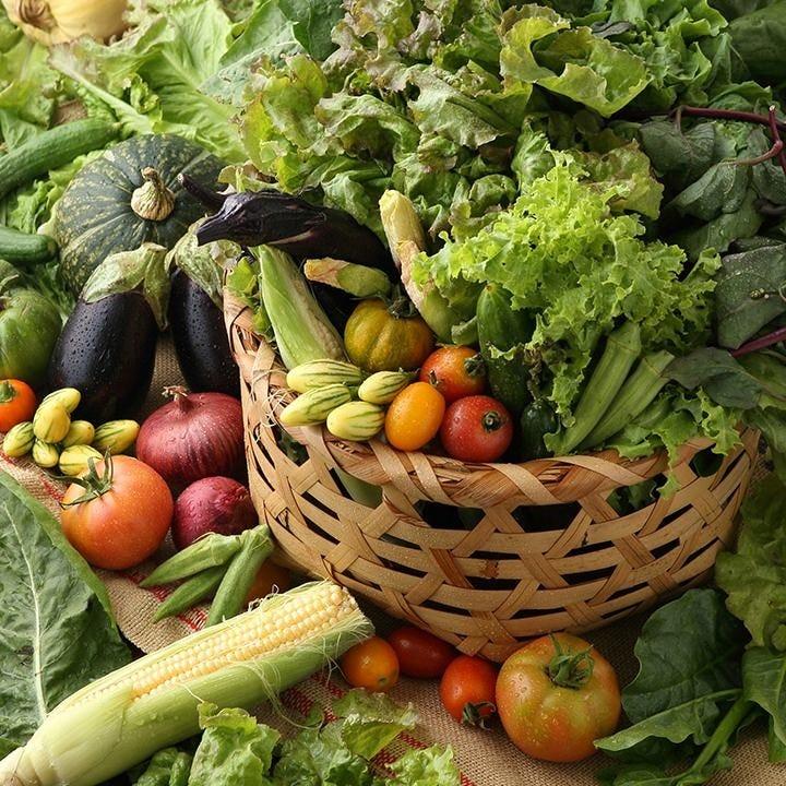 自家菜園+地元座間野菜
