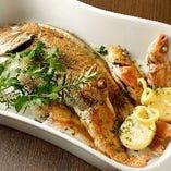 銚子漁港直送の新鮮な鮮魚の数々【千葉県銚子産の新鮮な鮮魚】