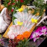 た鶴 天然タイの活き造り