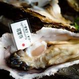 北海道産牡蠣【仙鳳趾】【北海道】