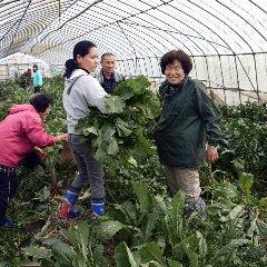 花様 ka-you 京橋京阪モール 野菜割烹の自然派和食店